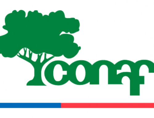 CONAF y el Centro de Investigación en Didáctica de las Ciencias CIDSTEM firman convenio