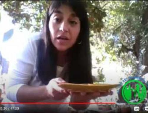 Programa de educación ambiental: Al Sur del Planeta Tierra